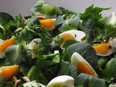 insalata di radicchio amaro, erbe spontanee e uova