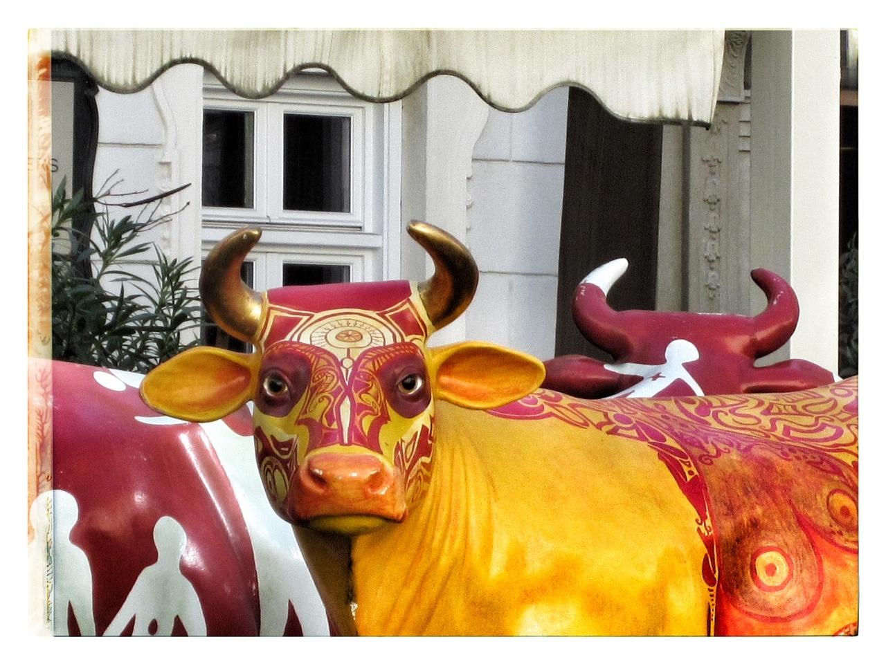 Mucche in metallo davanti a palazzo bianco