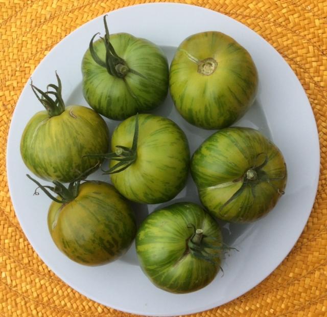 Pomodori verdi green zebra su piatto