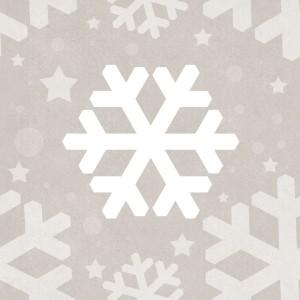 fiocco di neve stilizzato