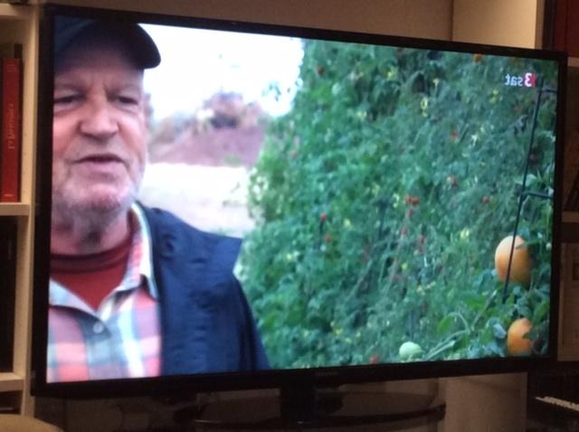 Foto di programma televisivo con Joe Cocker