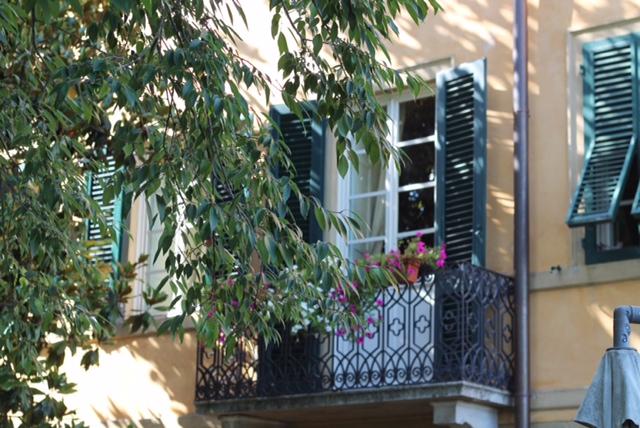 finestra di villa ottocentesca a lucca