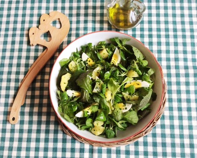 insalata in insalatiera su tovaglia quadrettata