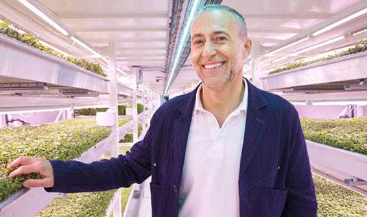 Michael Roux vicino a cassoni di insalata in coltura idroponica