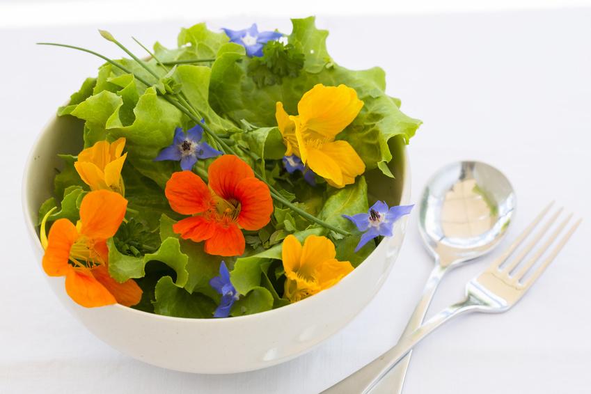 insalata con fiori gialli, blu e arancioni