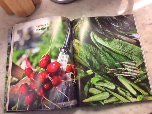 doppia pagina di libro che parla di insalate