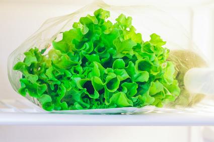 foglie d'insalata in un sacchetto in frigorifero
