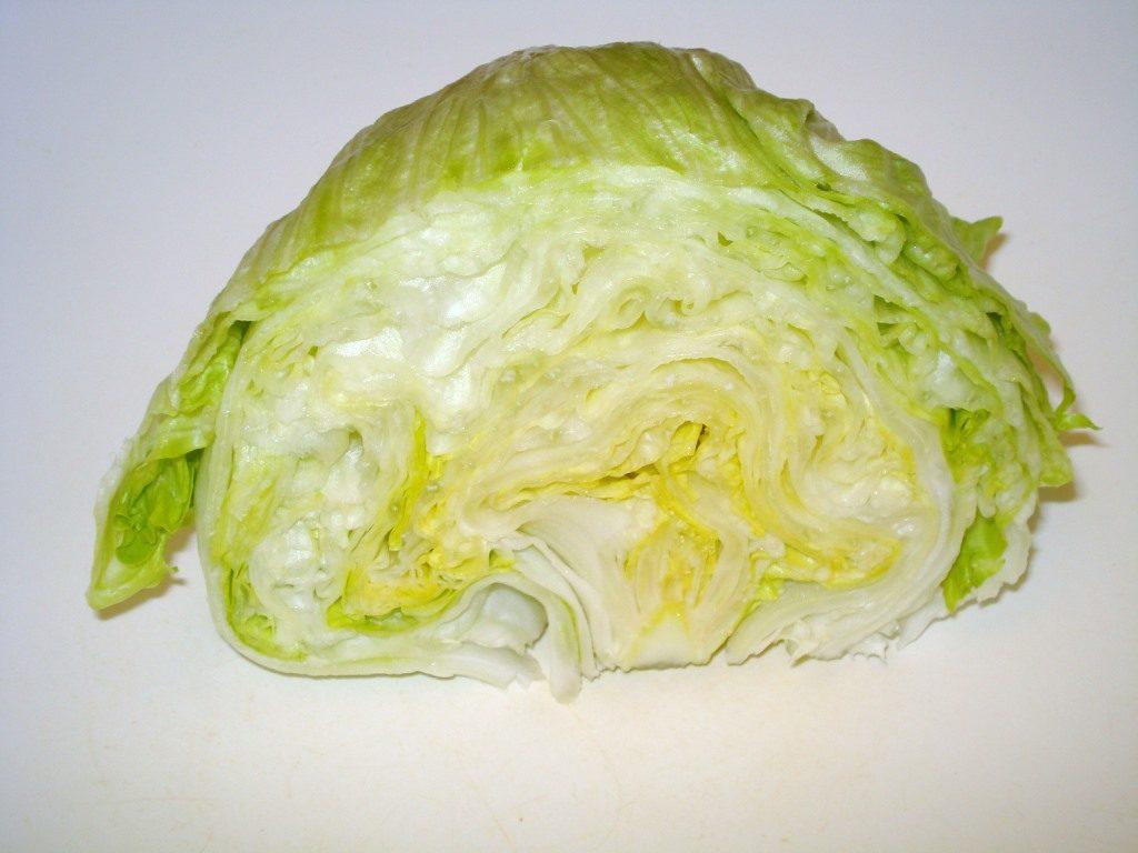 lattuga iceberg in sezione