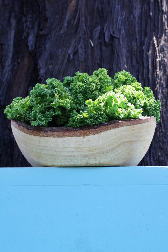 ciotola vianca con foglie di kale