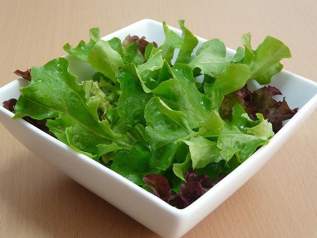 foglie di lattuga in ciotola quadrata